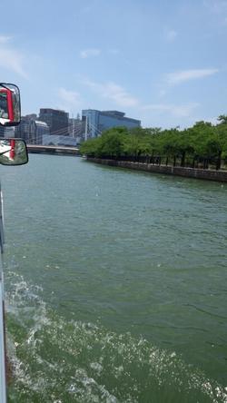 川をすいすい